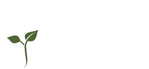 Designing Life Intentionally